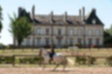 Ecuries du Château d'Ygrande - équitation Auvergne