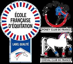 logo ffe.png