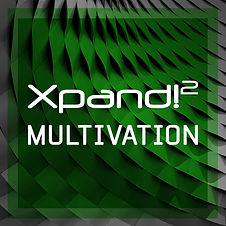 Multivation