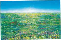 Green Field(5月)
