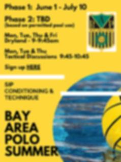 2020 BAP Summer Flyer.jpg