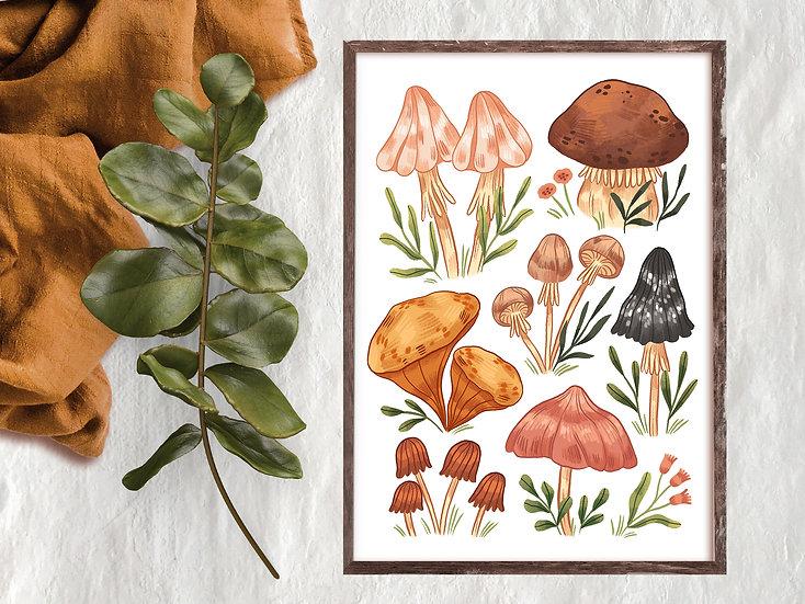 Mushrooms vol2