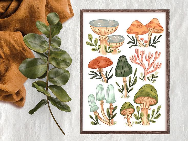 Mushrooms vol3