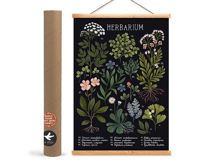 Herbarium~ black