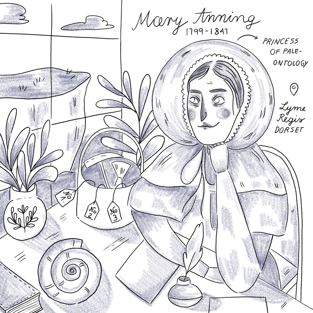 Mary Anning sketch by iz.ptica