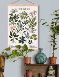 iz ptica society 6 herbarium poster