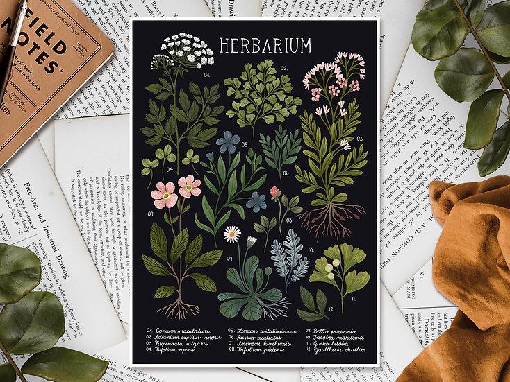 Herbarium ~ black