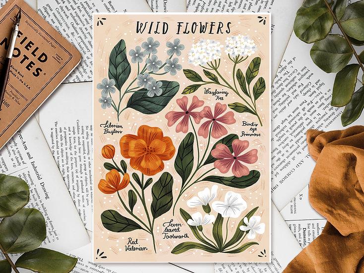 Wild Flowers ~vol2.