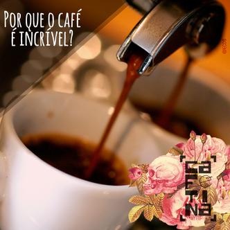Cientista de Harvard que estudou café por 20 anos explica por que ele é incrível!