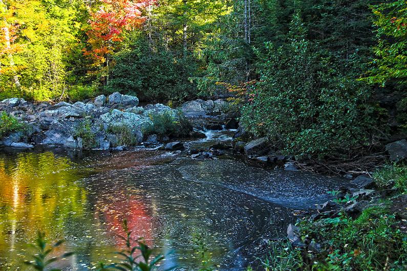 Wisconsin Fall Colors, Dennis Elliott