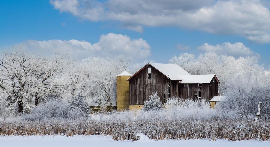 Frosty Morning - Wayne Christensen