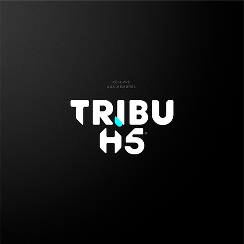 HI5_tribu-126.png