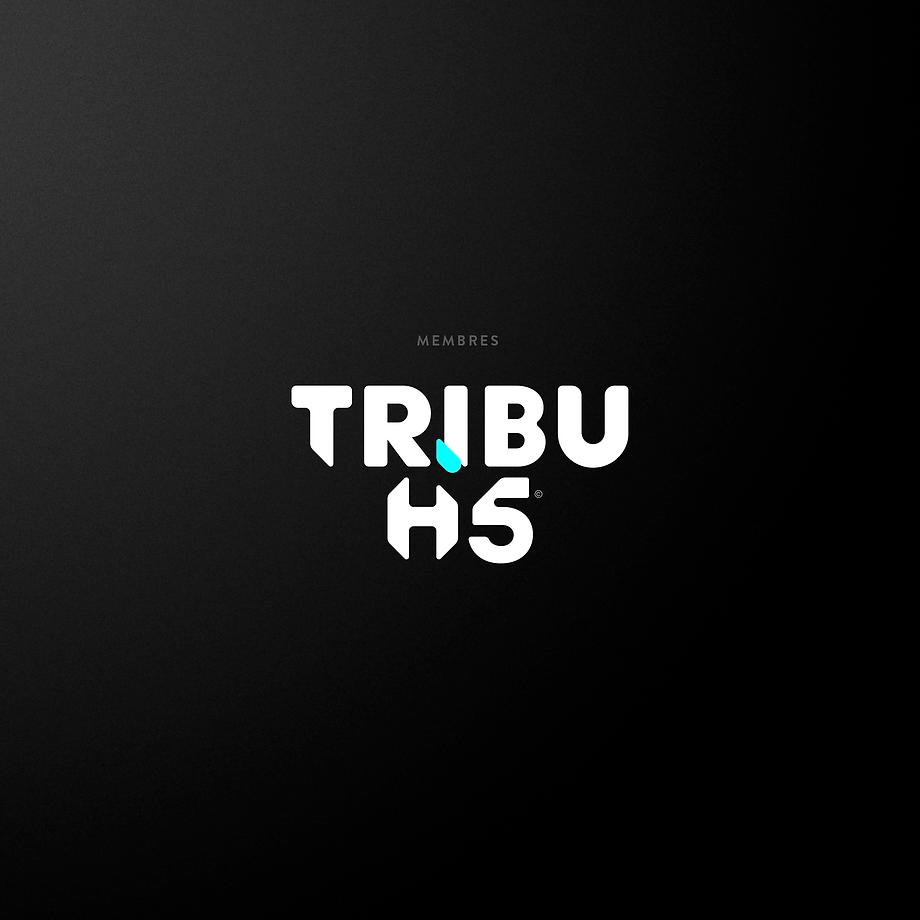 HI5_membres-tribuhi5.png
