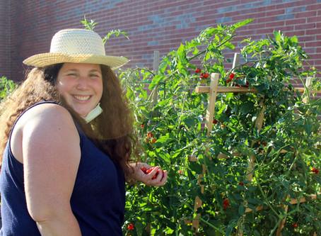 Community Garden Series #2: Innovation & Friendship at Elm Park School Community Garden