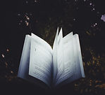book-book-pages-college-448835.jpg