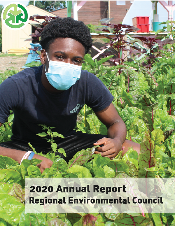 2020 Annual Report-01.png
