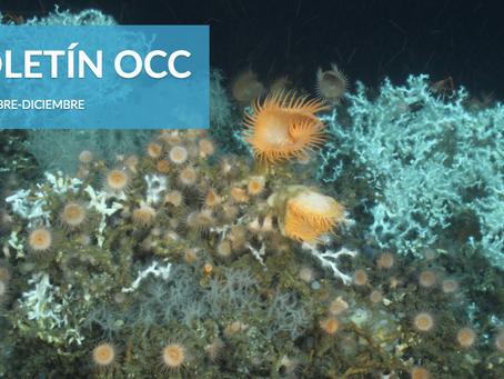 Accedé a nuestro segundo boletín electrónico con todas las novedades océanicas