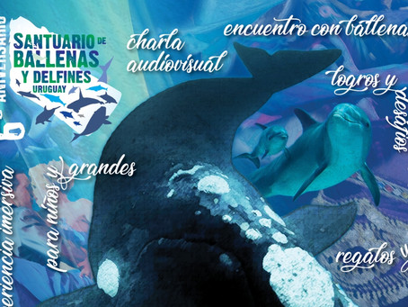 6to aniversario del Santuario - La Paloma y Punta del Este