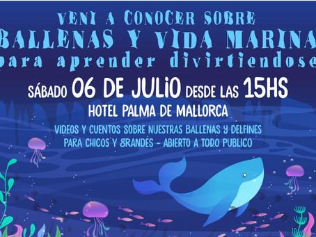 Ballenas y vida marina para niños y grandes, anunciando la temporada de ballenas 2019