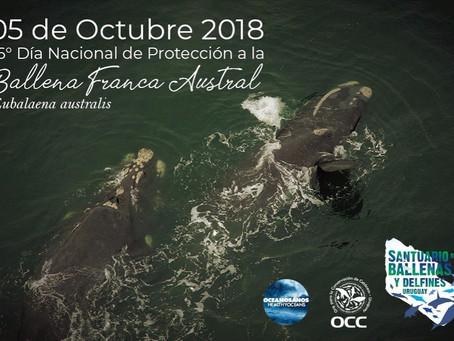 Día Nacional de Protección a la Ballena Franca Austral