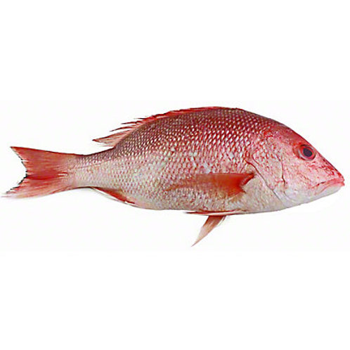 Wild Snapper, Whole, 1.5-2 lbs
