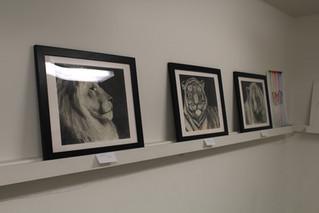 Miranda Prior's Art Gallery