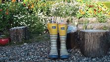 rainboots 1 (c) rosi koll.png