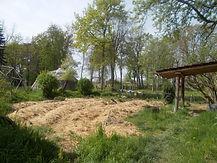 Potager en permaculture.JPG