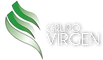 grupo virgen.png