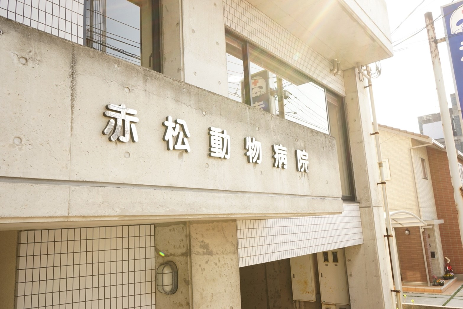 赤松動物病院_22