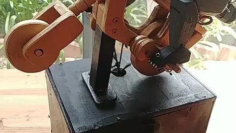 Raccon automaton