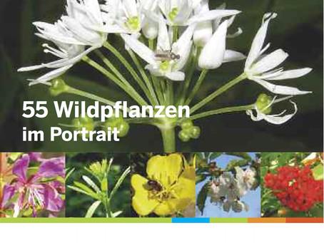 55 Wildpflanzen im Portrait