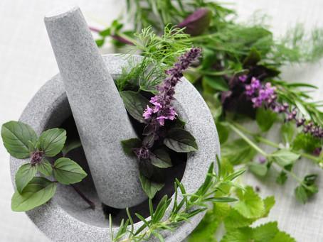 Heilpflanzen und Kräuter gegen Frühjahrsmüdigkeit