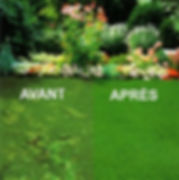 engrais pelouse, engrais fleurs, hose , rateau, outils jardinage