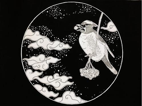 Birds Sketches Series