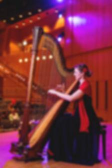 Harfe bei Hochzeit,Geburtstagsfest, Hauskonzert