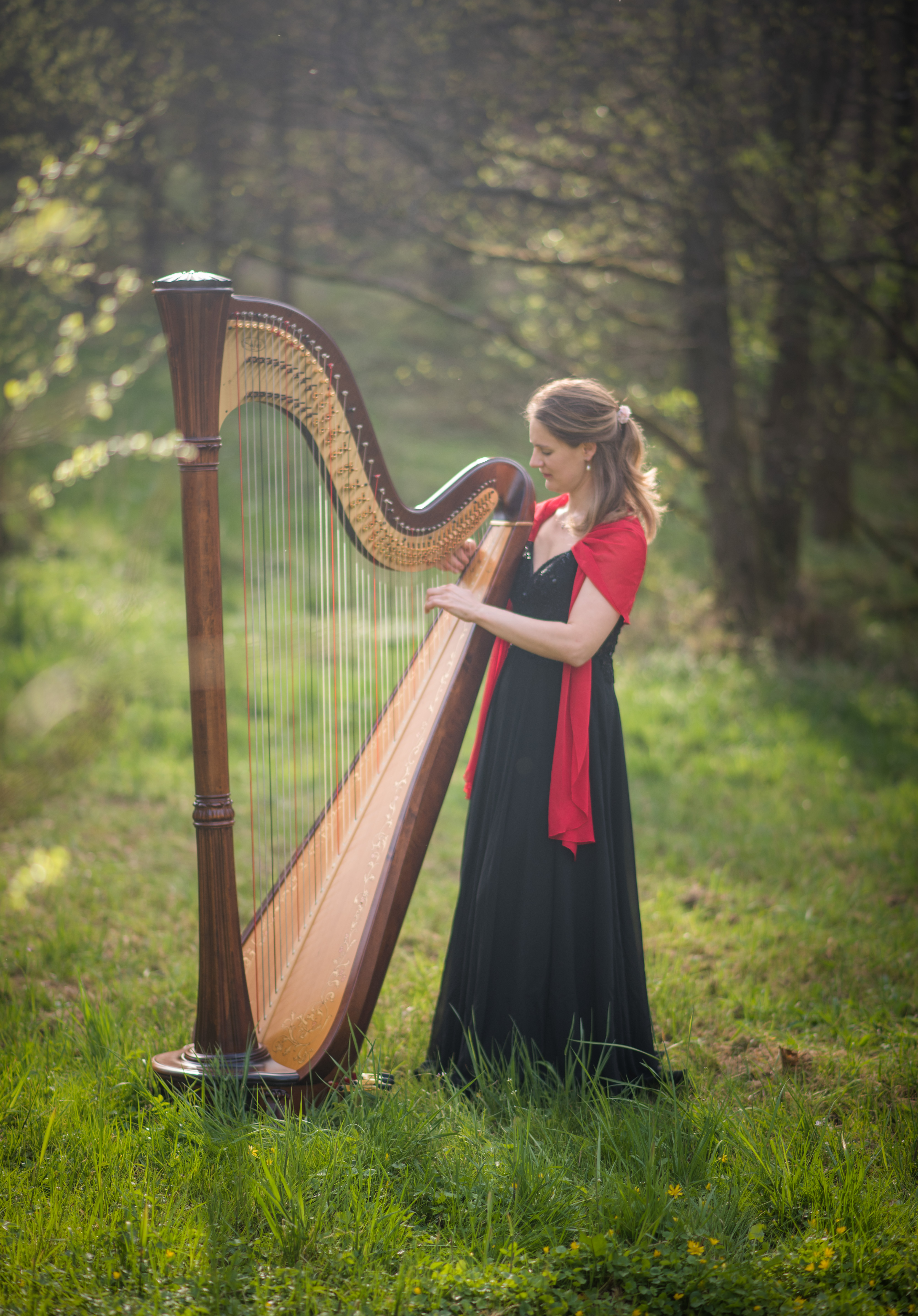 Sonja Fiedler Harfe