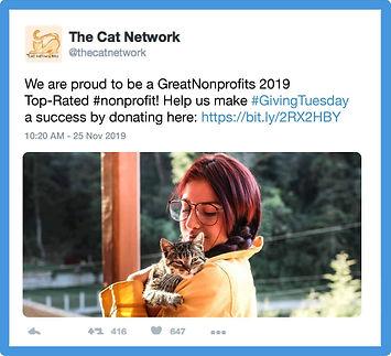 The Cat Network Twitter .jpg
