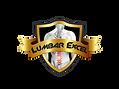 LOGO LUMBAR EXCEL.png