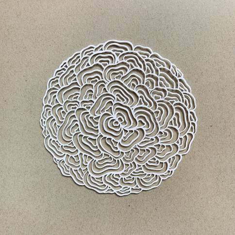 Radial energy, acid free paper, 11cm, available