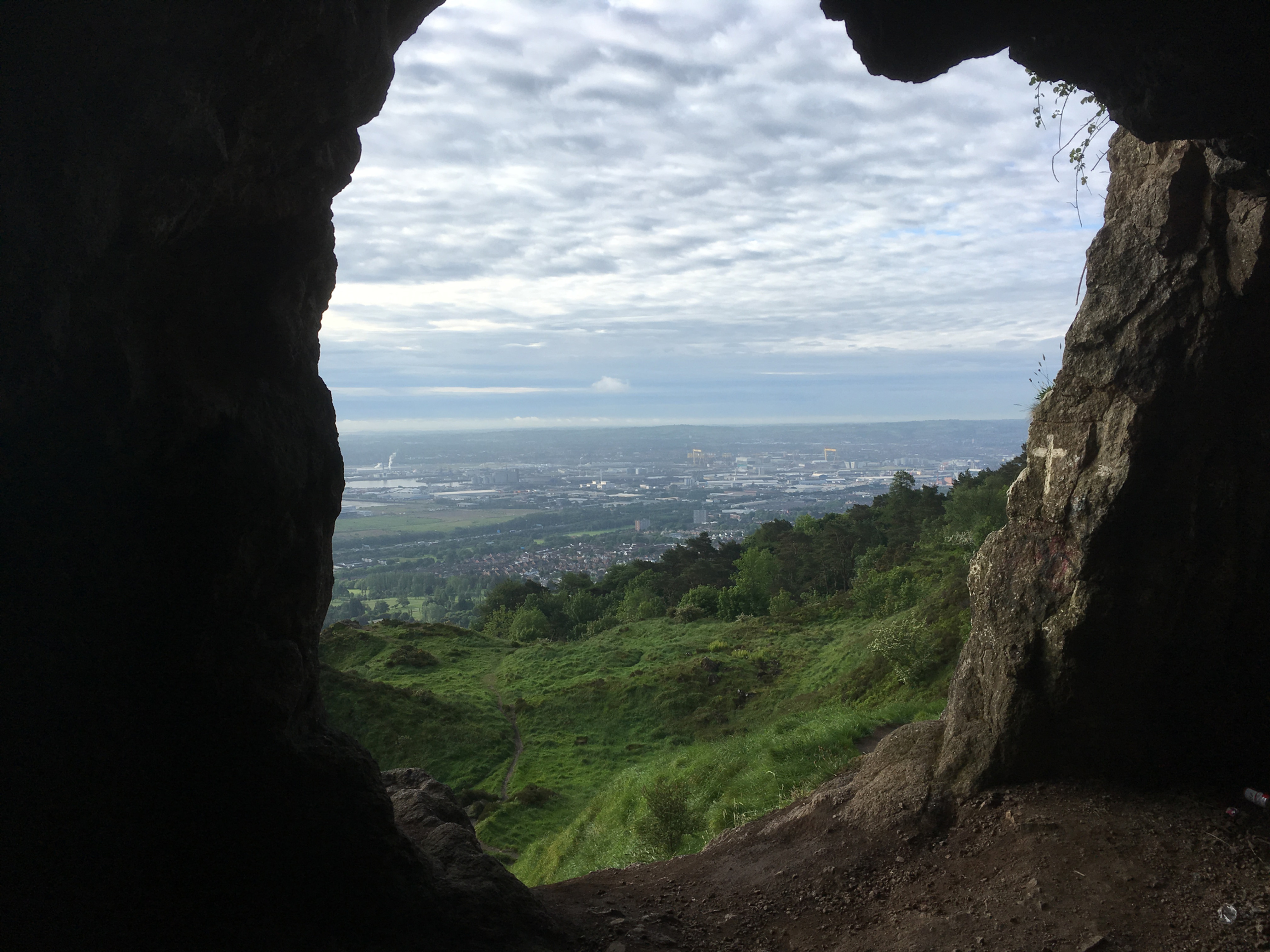 Foraging Tour, Cave Hill, Belfast