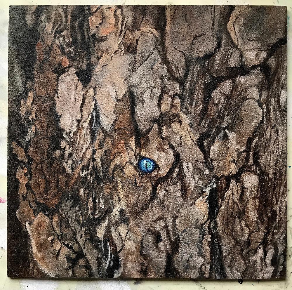 Tree Bark Lizard Eye