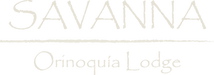 savanna_logo_principal_light_vectores-1.