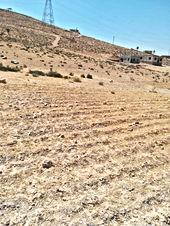 قطعة ارض للبيع مساحتها 502 قوشان مستقل في الزرقاء عطل الرصيفة من المالك