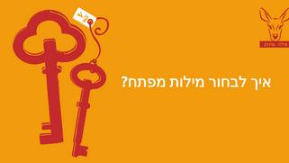 למצוא את מילת המפתח שלך
