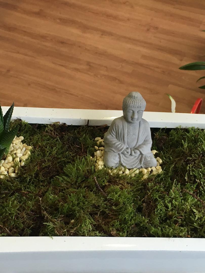 jardin zen buda.JPG