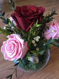 centro pecera pq rosas liofilizado