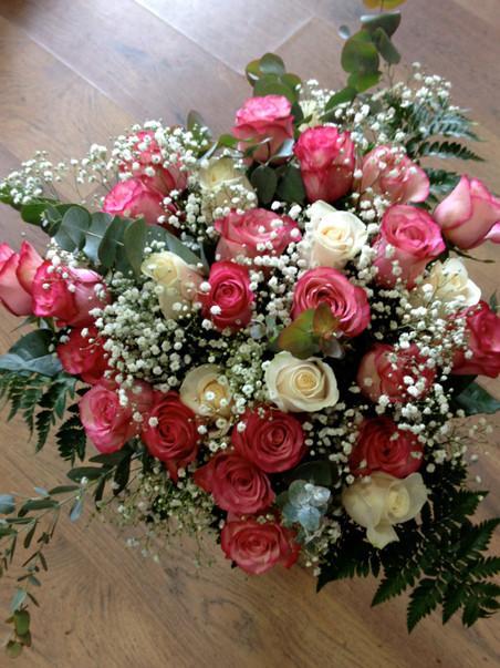 Rosas, rosas, rosas...