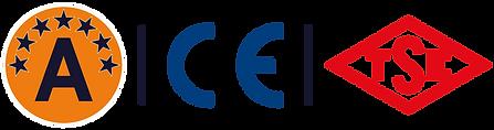 CE-TSE.png