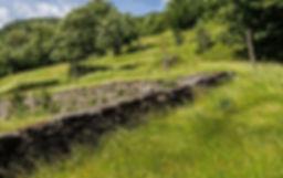 Naturschutz_Trockenmauer.jpg
